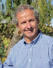 Image result for Commercial Director Carlos Serrano montes winery