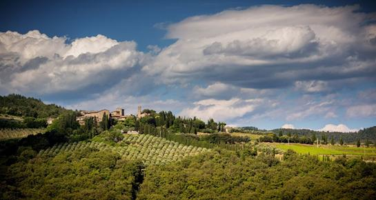 http://www.volpaia.com/images/gallery/volpaia-chianti_02.jpg