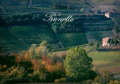 Image result for prunotto winery